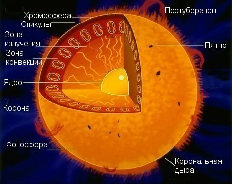 Самая известная звезда-сверхгигант - звезда Бетельгейзе.  С точки зрения строения Солнце можно условно разделить на.